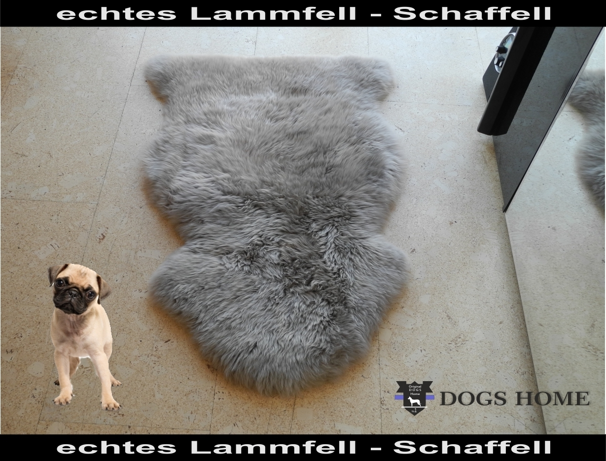 dogshome schaffell lammfell grau f r hunde katzen. Black Bedroom Furniture Sets. Home Design Ideas
