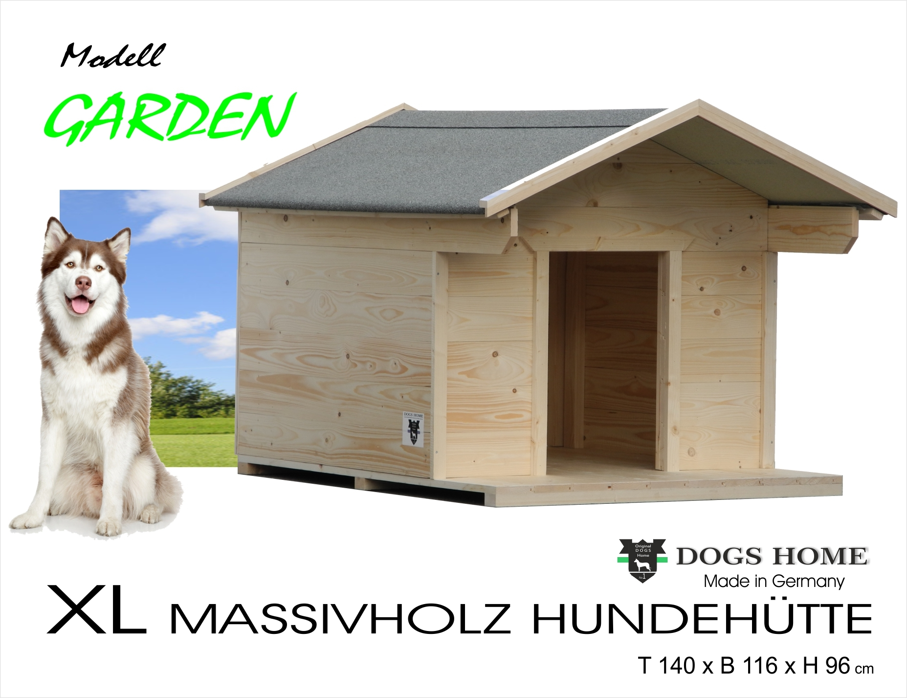 blog - home of pets - alles rund ums haustier