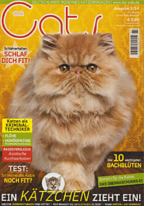 Pressebericht in OUR CATS März 2014